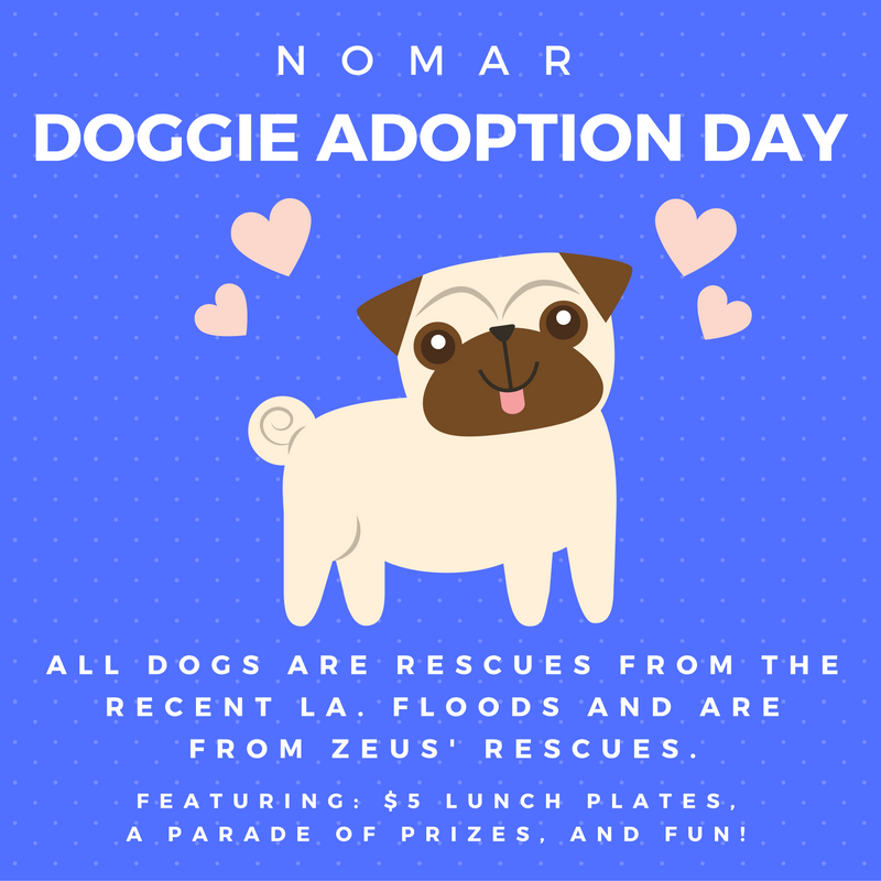 doggie adoption day